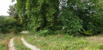 Le Chemin vers le Chateau.jpeg